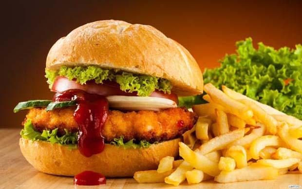 hamburger-fast-food-french-fries-Favim.com-483020